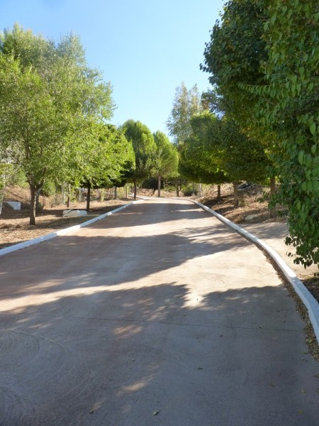 Lovely Finca with large olive and fruit groves, pool, spectacular views, near Antequera Town.properties/14/03.jpg