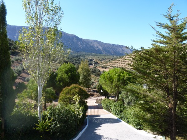 Lovely Finca with large olive and fruit groves, pool, spectacular views, near Antequera Town.properties/14/27.jpg