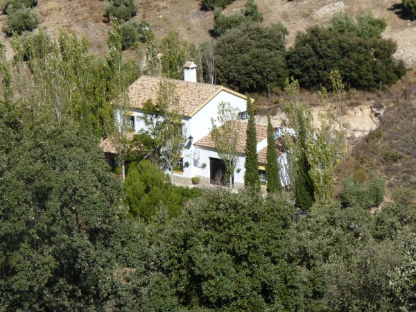 Lovely Finca with large olive and fruit groves, pool, spectacular views, near Antequera Town.properties/14/37.jpg