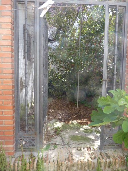 FANTASTIC OPPORTUNITY: 3 Bed, 2 Bath Townhouse. Central Location.properties/2/24.jpeg