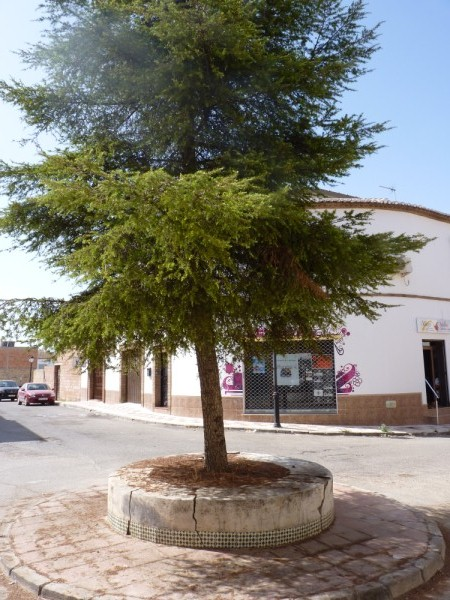 Modern Antequera area 3 Bedroom Townhouse. Exclusive location in Mollina.properties/3/21.jpeg