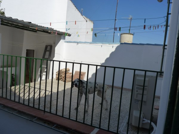 Large well priced 3 bedroomed corner house with garage in central Antequera town.properties/38/20.jpg